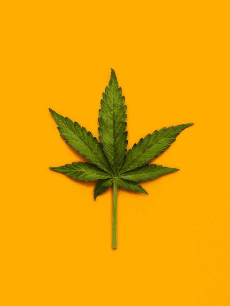 best online web platform to buy weeds