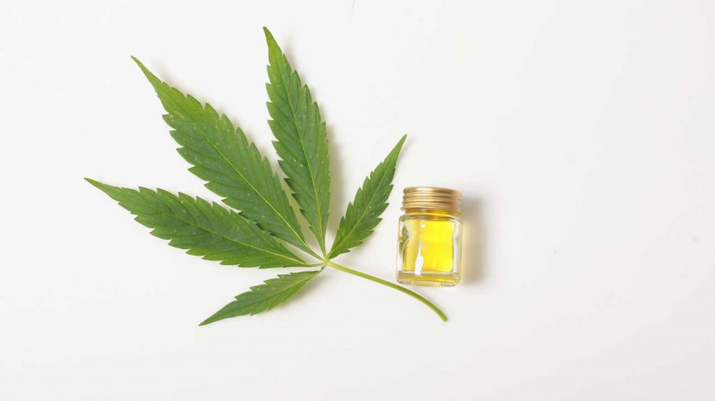 The hemp is an important source for the CBD flowers